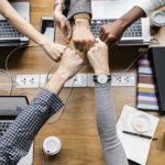 Entenda o passo a passo para aderir ao Programa Empresa Cidadã de Niterói